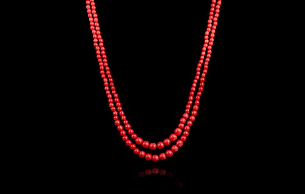 Coral Rosu 2